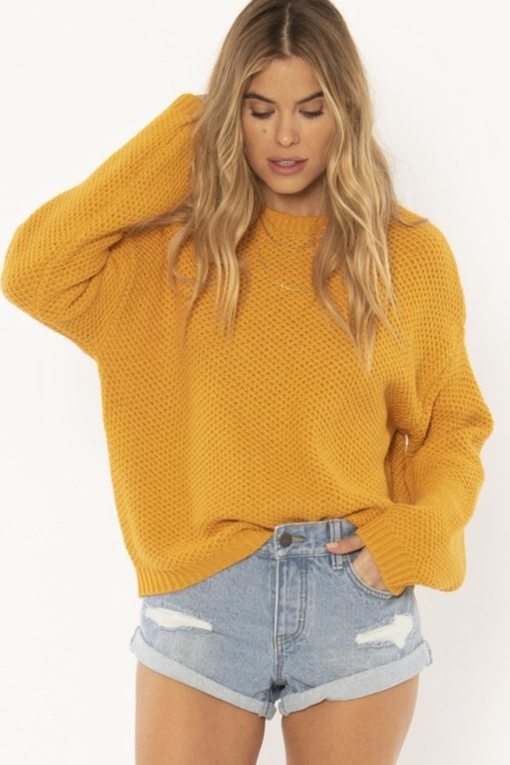AMUSE SOCIETY Mustard Knit Sweater - Main Image