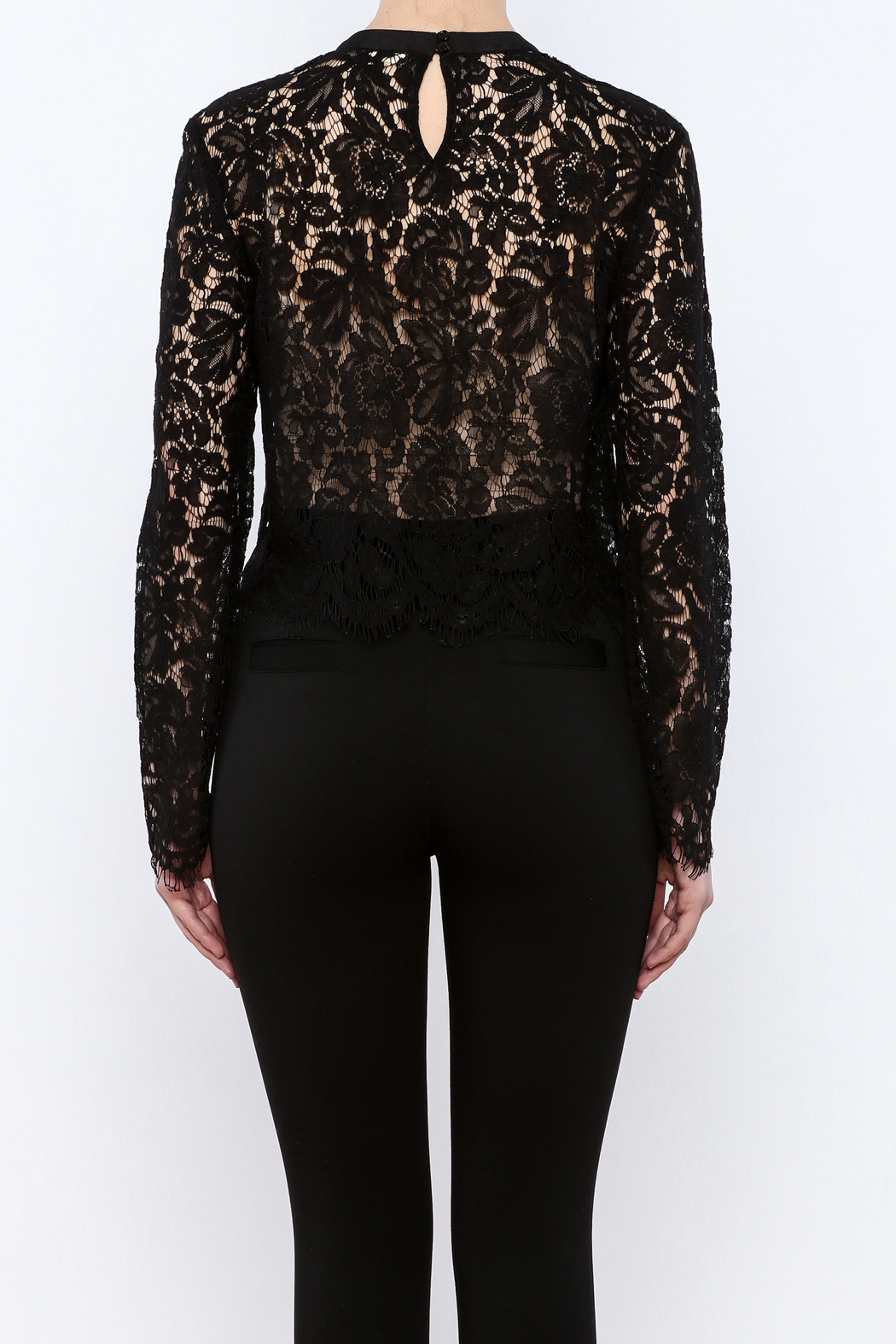 Mustard Seed Lace Sleeve Blouse - Back Cropped Image