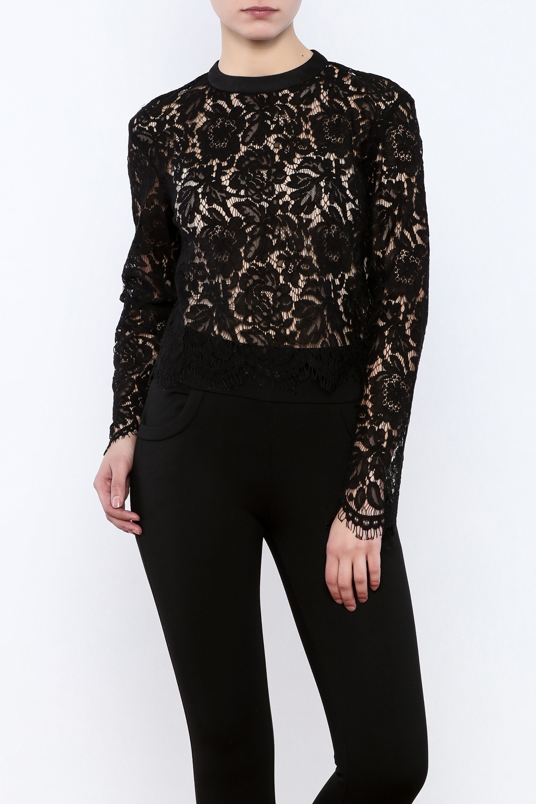 Mustard Seed Lace Sleeve Blouse - Main Image