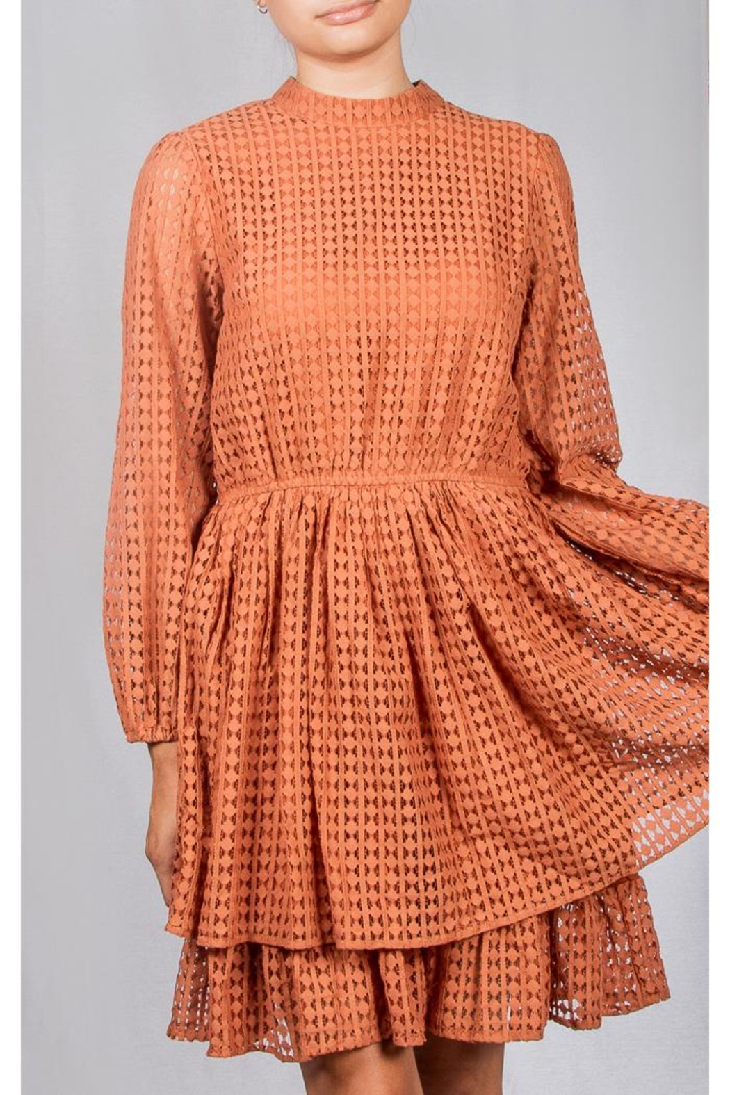 Mustard Seed Vintage Lace Dress - Front Cropped Image
