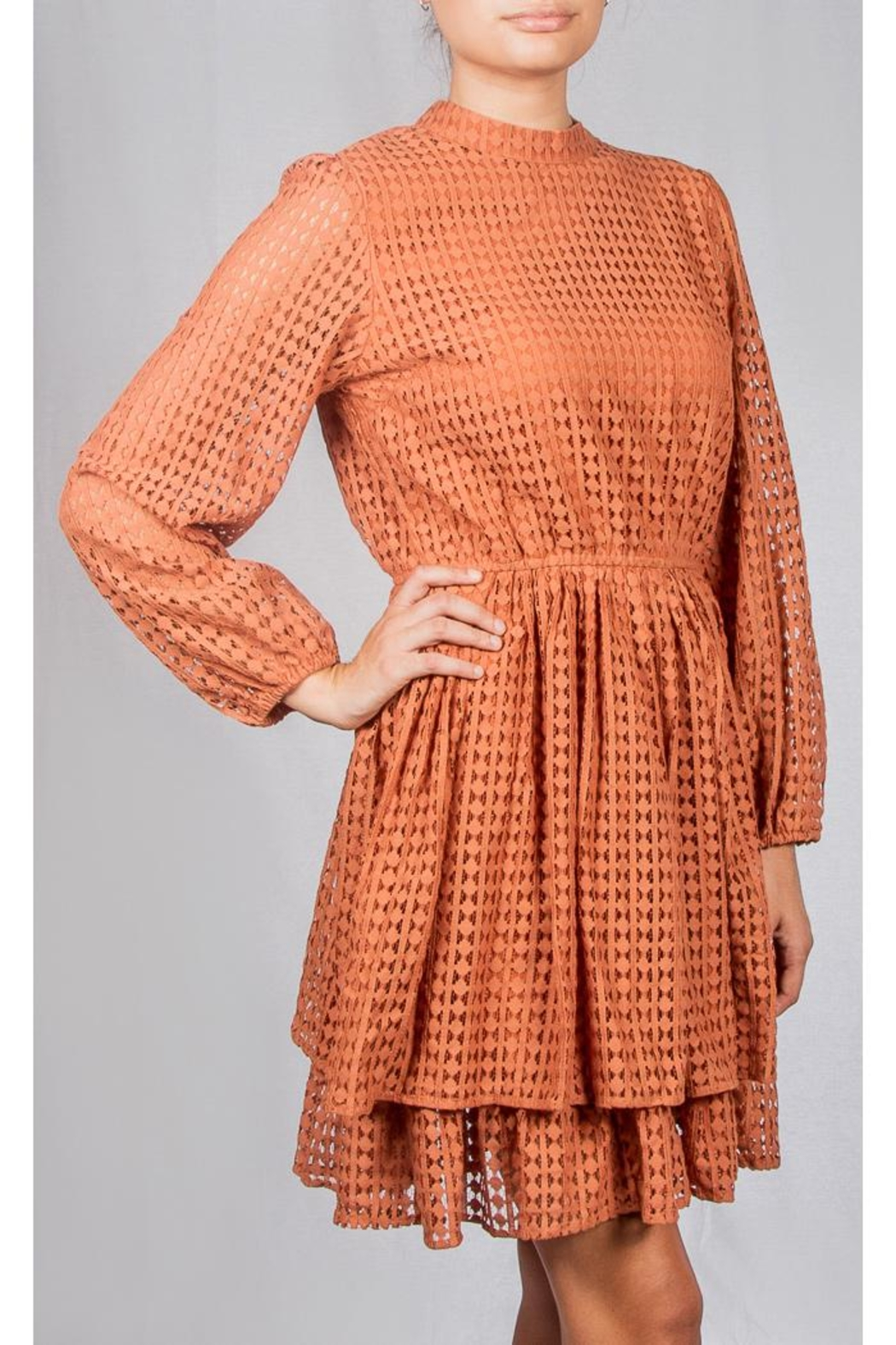 Mustard Seed Vintage Lace Dress - Front Full Image