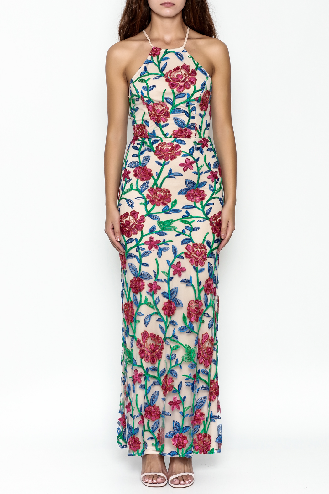 Mystic Embroidered Maxi Dress - Front Full Image
