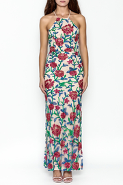 Mystic Embroidered Maxi Dress - Front full body