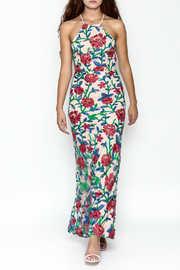 Mystic Embroidered Maxi Dress - Product Mini Image