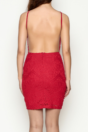 Mystic Lace Dress - Back cropped