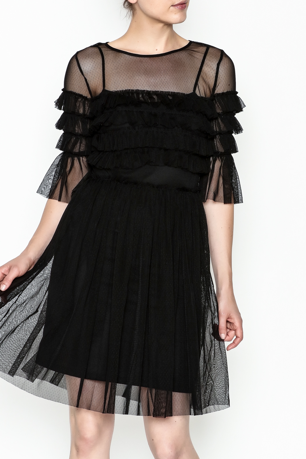Mystic Mesh Detail Dress - Front Cropped Image