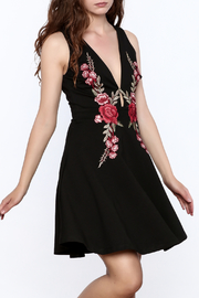 Mystic Rose Embroidered Dress - Front cropped