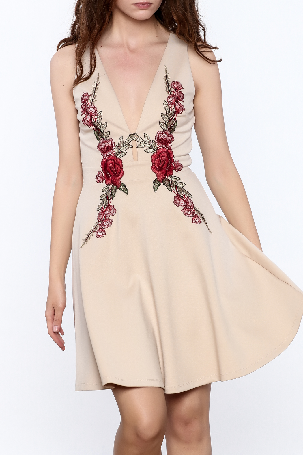 Mystic Rose Embroidered Dress - Front Cropped Image