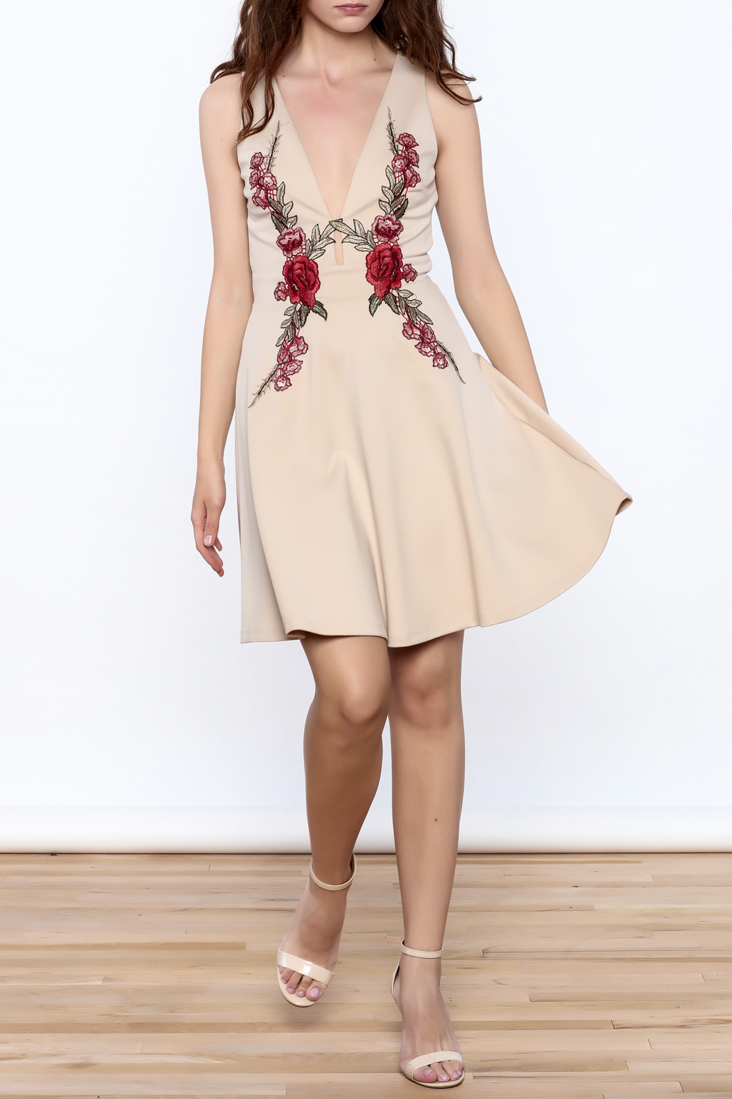 Mystic Rose Embroidered Dress - Front Full Image
