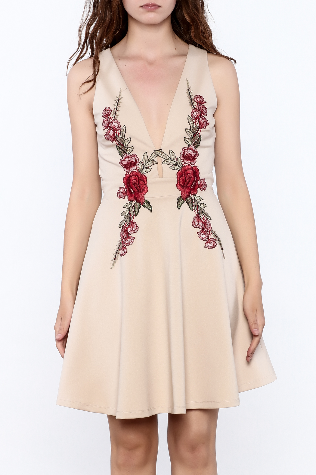 Mystic Rose Embroidered Dress - Side Cropped Image