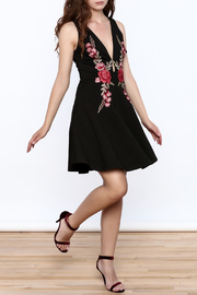 Mystic Rose Embroidered Dress - Front full body