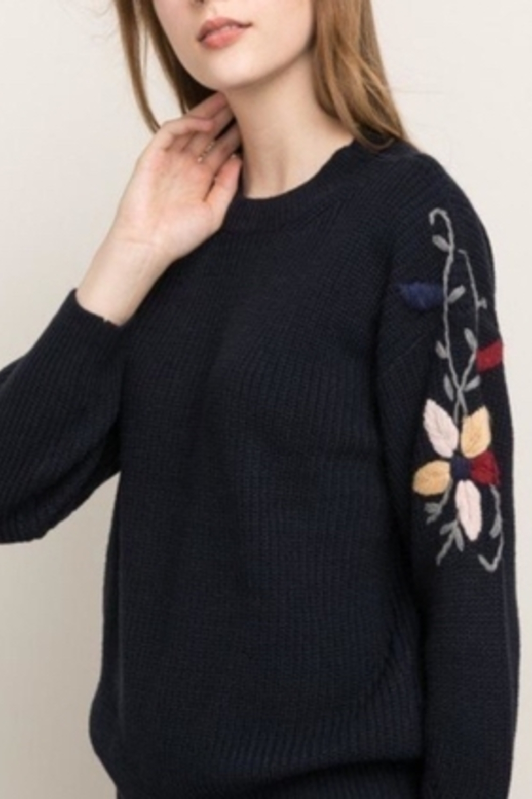 Mystree Embroidered Sleeve Sweater - Front Full Image