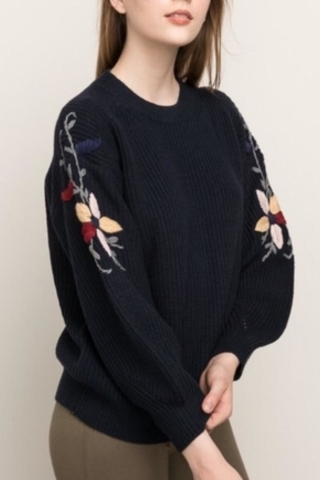 Mystree Embroidered Sleeve Sweater - Main Image