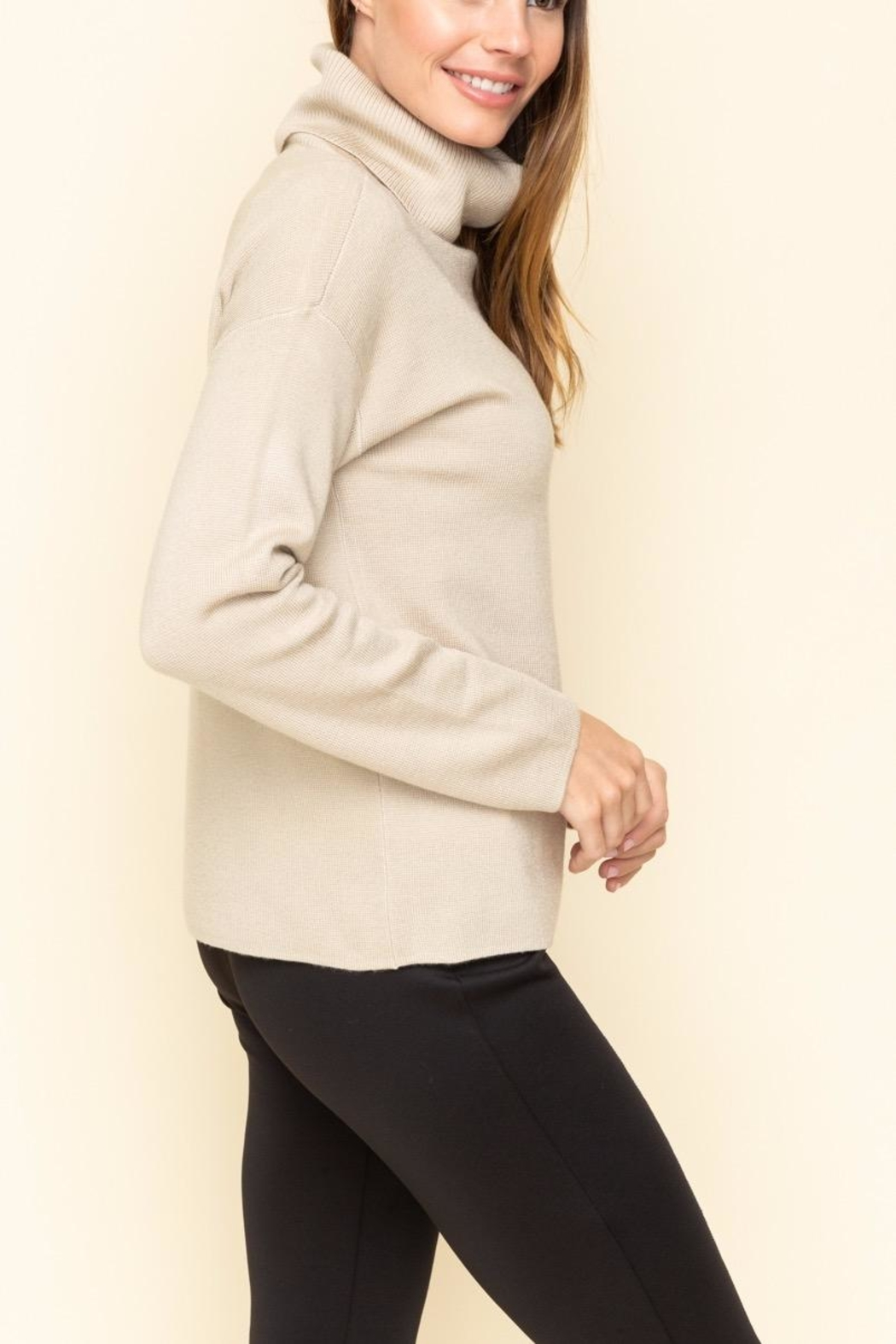 Mystree Turtle Neck Sweater - Front Full Image