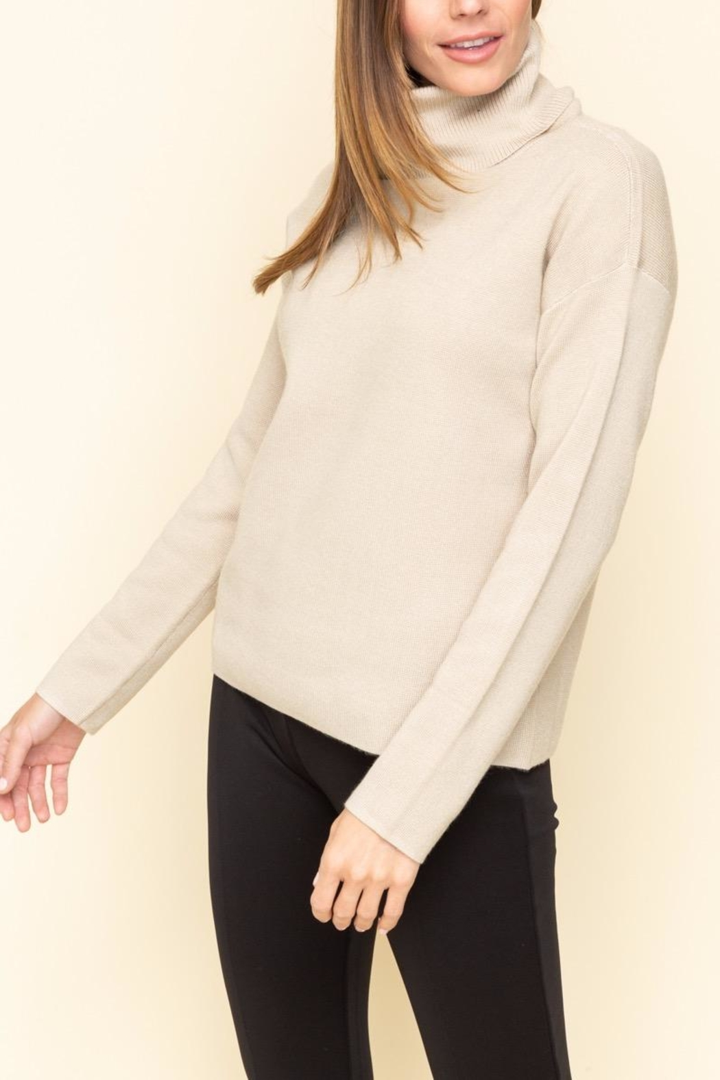 Mystree Turtle Neck Sweater - Front Cropped Image