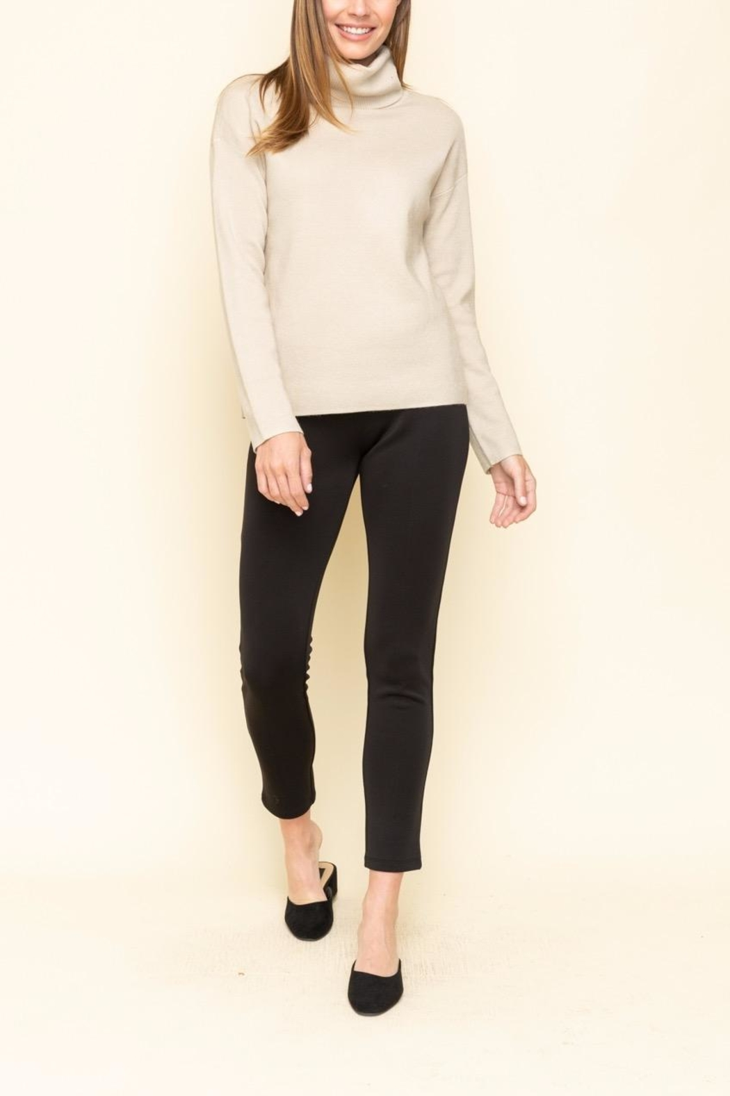Mystree Turtle Neck Sweater - Side Cropped Image
