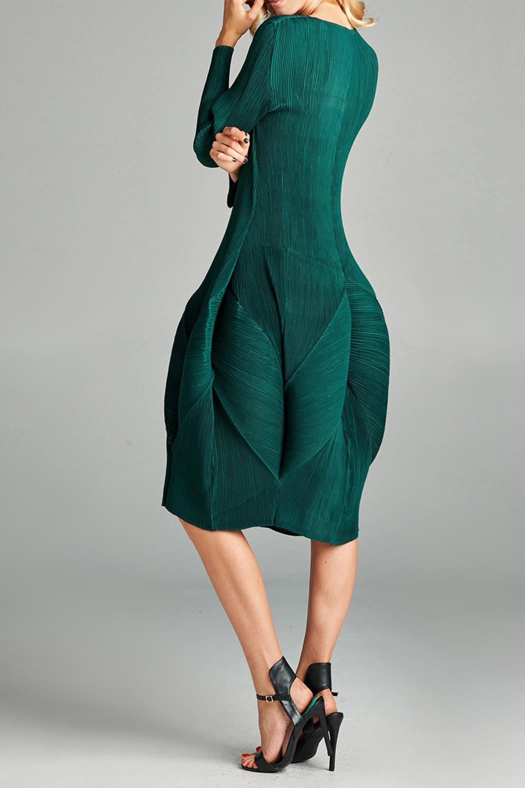 Nabisplace Blooming Pleated Dress - Back Cropped Image