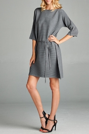 Nabisplace Knit Pleated Dress - Product Mini Image