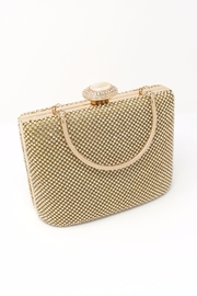 Nadya's Closet Stone Accent Evening Clutch - Front full body