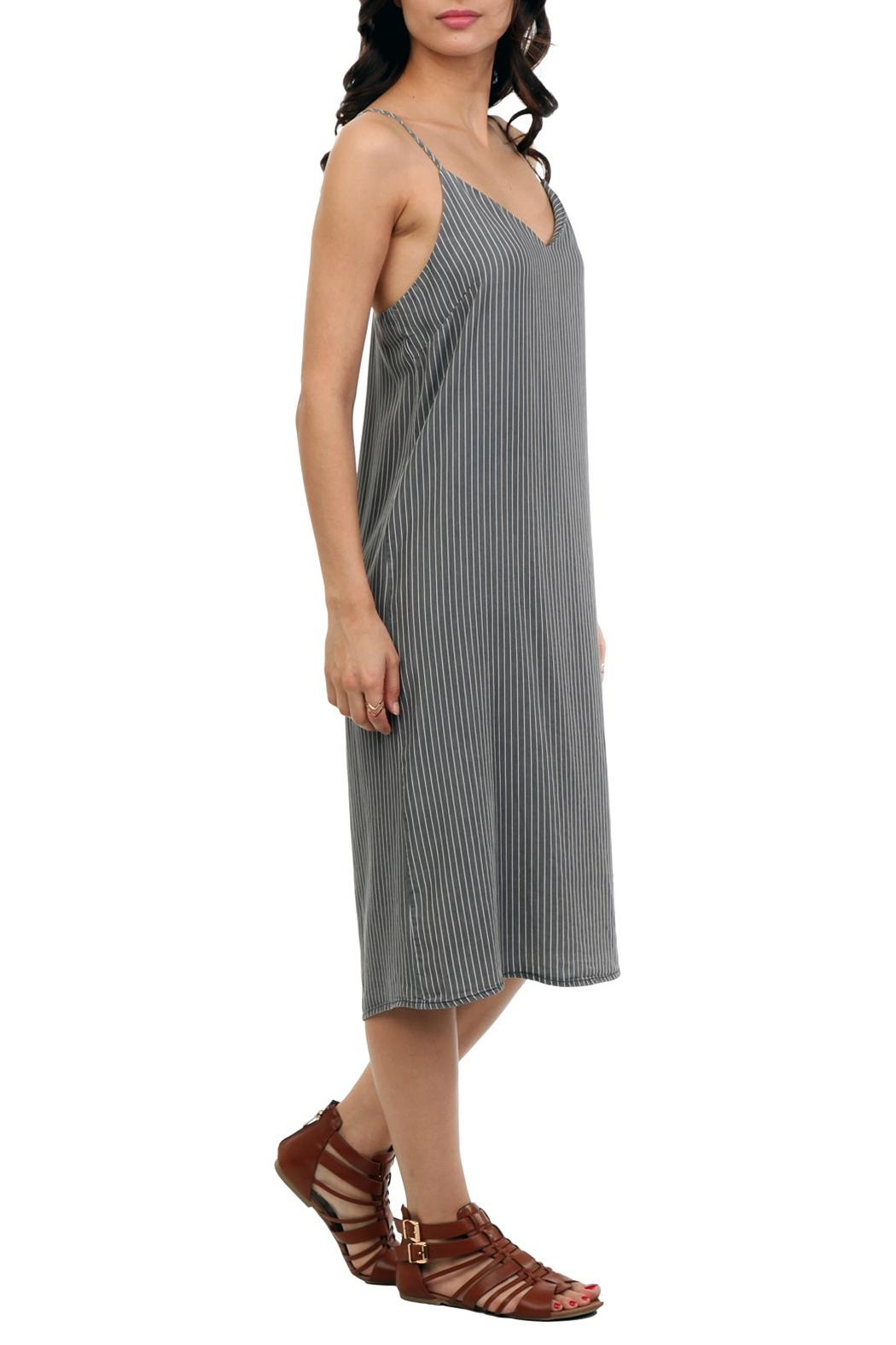 Naked Zebra Midi Denim Dress - Front Full Image