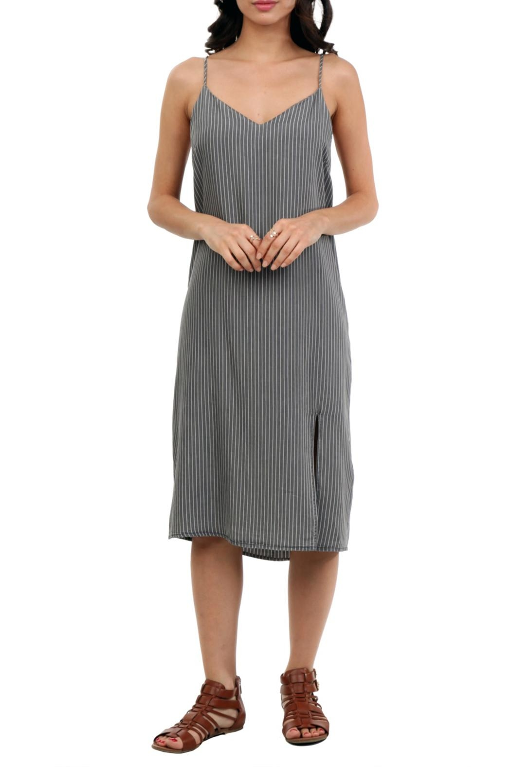 Naked Zebra Midi Denim Dress - Main Image