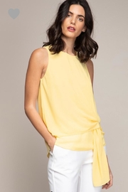 Naked Zebra Pale Yellow Top - Product Mini Image