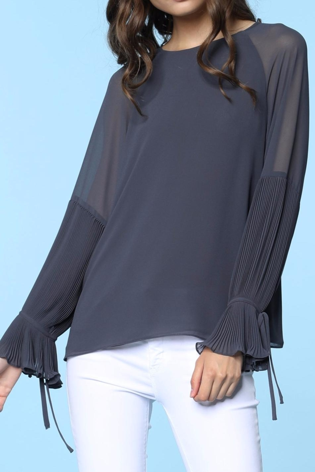 Naked Zebra Pleated Solid Blouse - Front Cropped Image