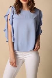 Naked Zebra Ruffle Sleeve Top - Front cropped