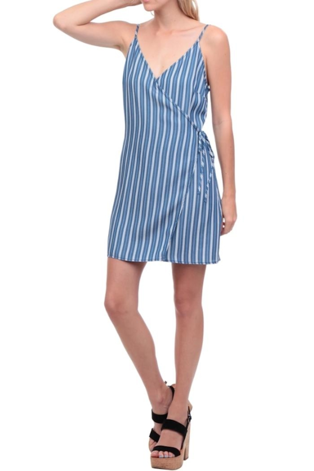 Naked Zebra Stripe Wrap Dress - Front Full Image