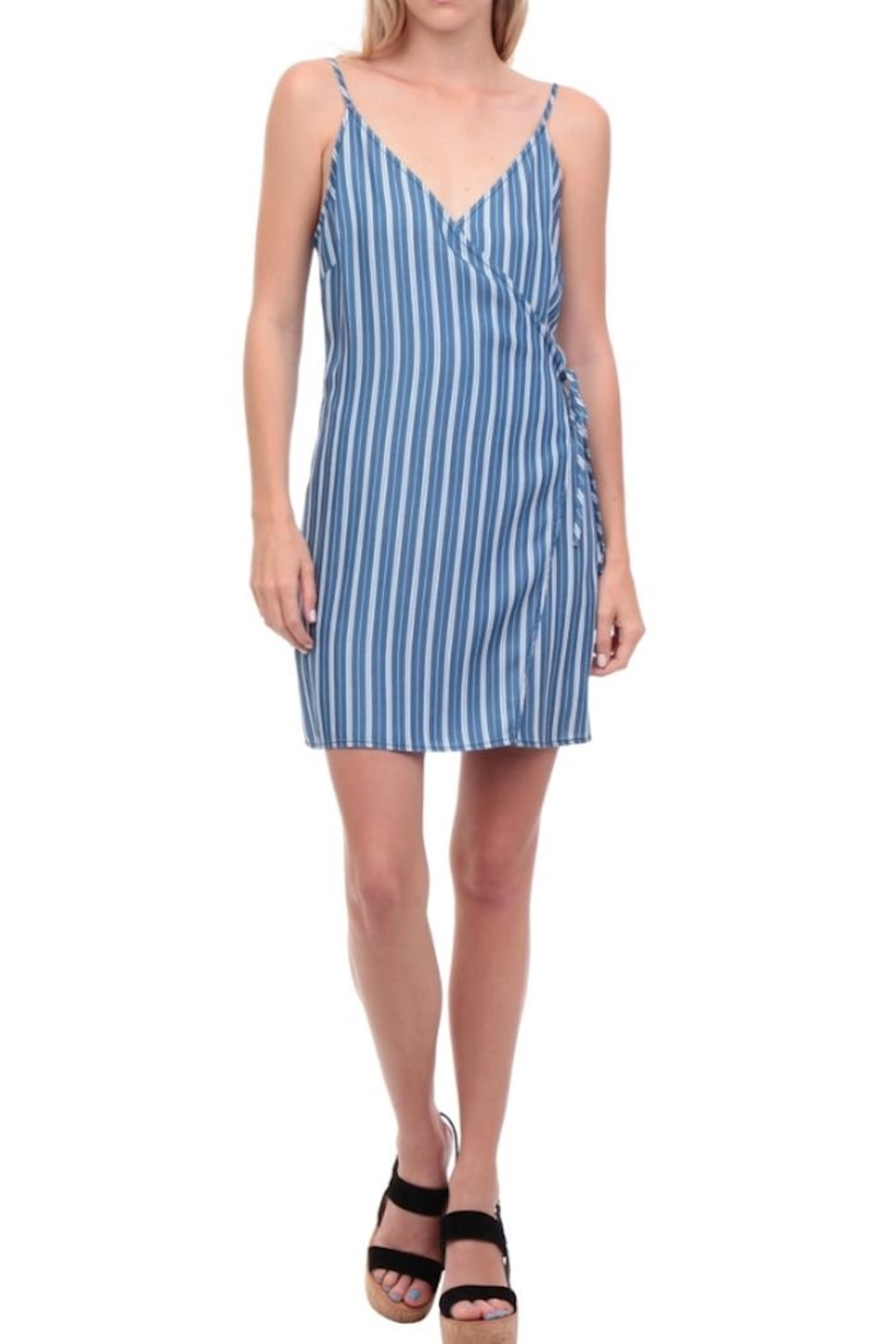 Naked Zebra Stripe Wrap Dress - Main Image