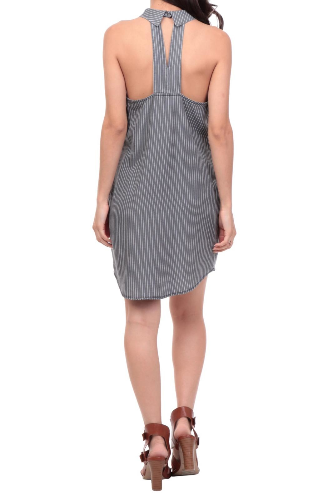 Naked Zebra Striped Keyhole Dress - Back Cropped Image
