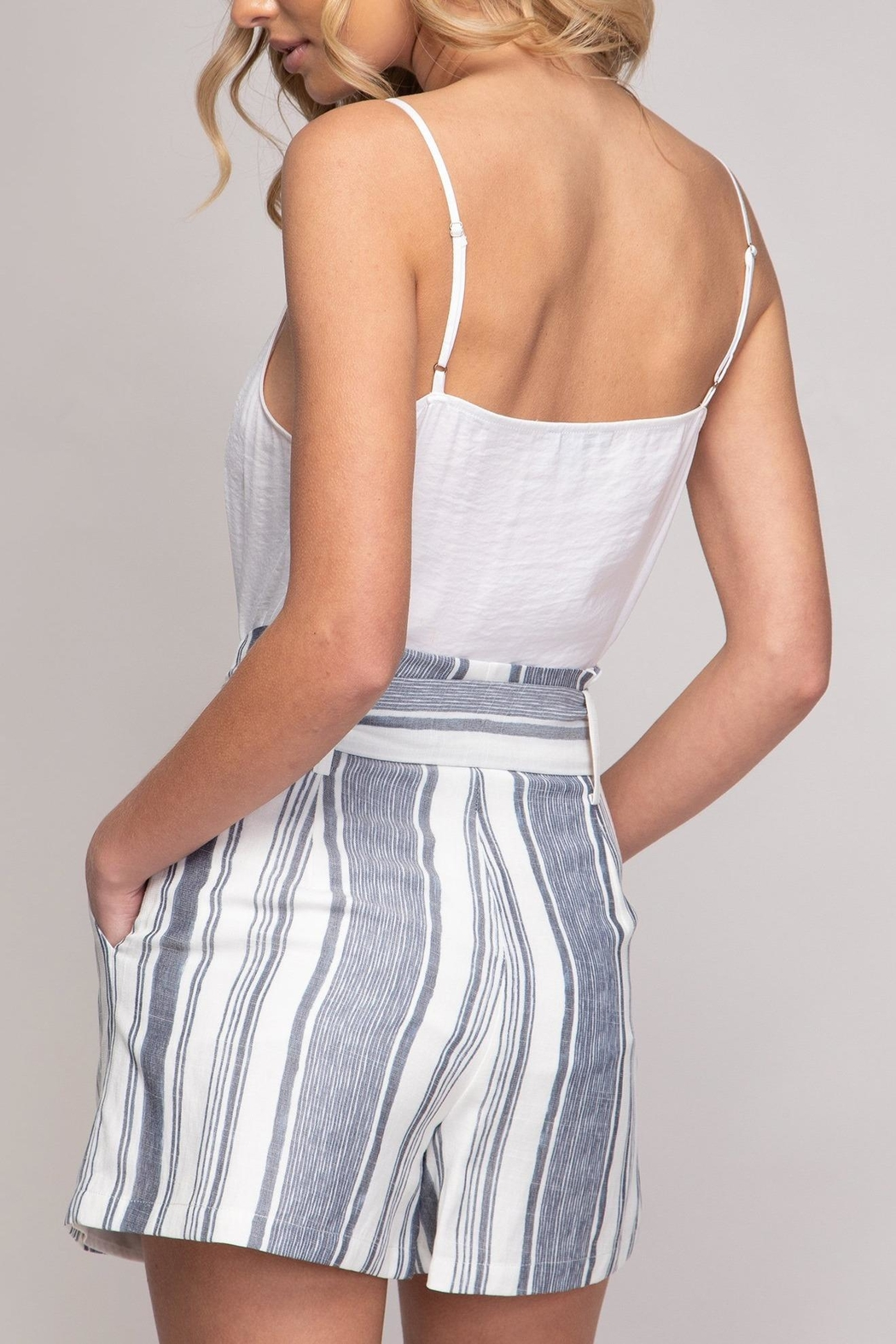 Naked Zebra Striped Printed Shorts - Side Cropped Image