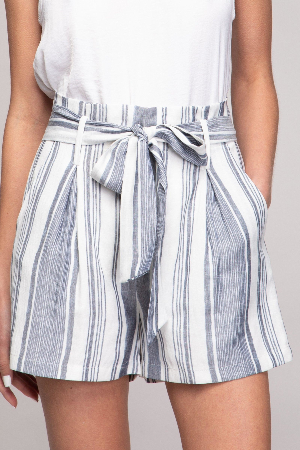 Naked Zebra Striped Printed Shorts - Front Cropped Image