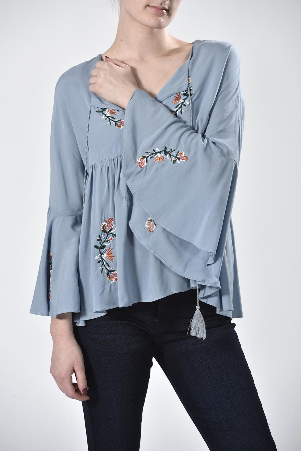 Nana Blue Embroidered Top - Front Full Image
