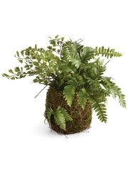 Napa Home & Garden Mixed Fern Drop In - Front cropped