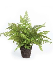 Napa Home & Garden Soft Fern Drop In - Front cropped