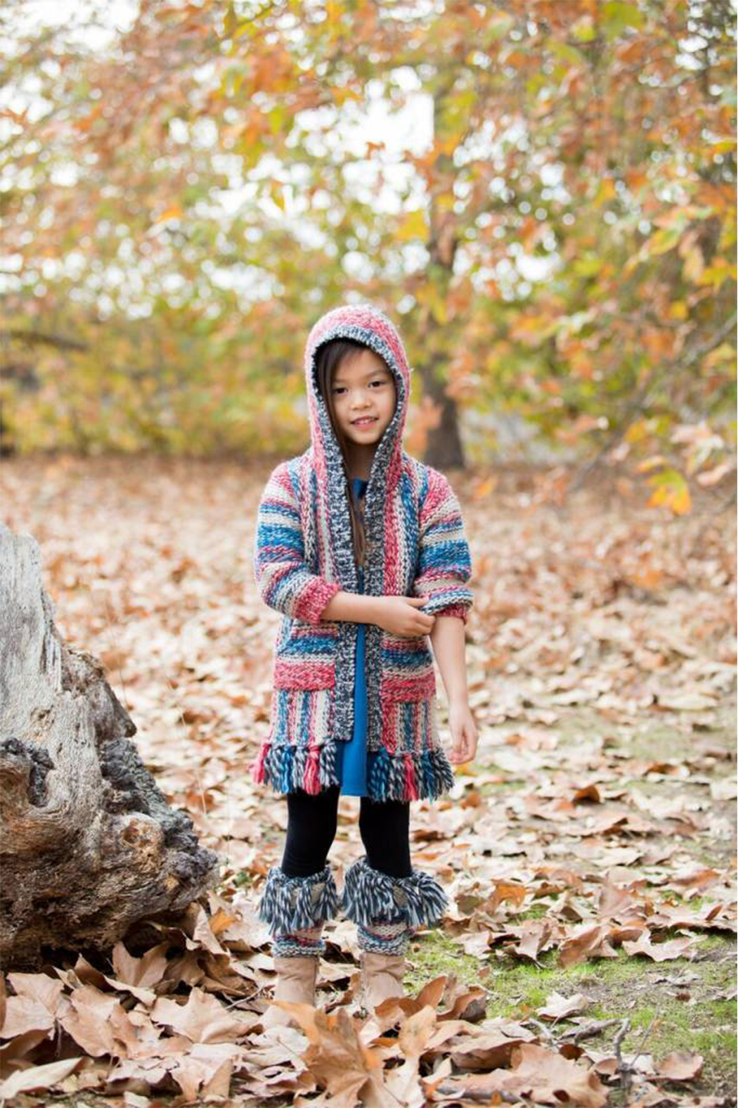 Mimi & Maggie Native Stripe Zip Front Hoodie - Front Full Image