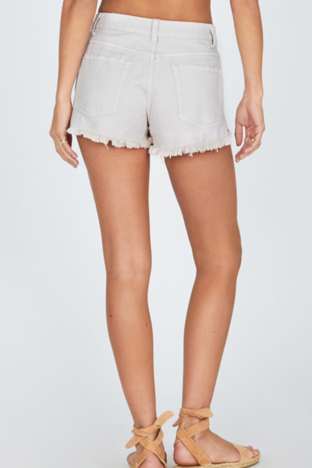 AMUSE SOCIETY Natural Shoreline Shorts - Front Full Image