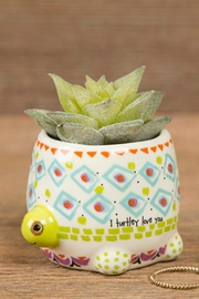 Natural Life Faux Succulent Turtle - Front cropped