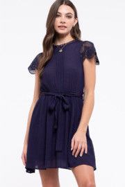 By the River Navy Belted/Pleated Mini Dress - Product Mini Image