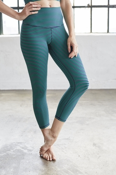 DYI Navy Striped Tight - Alternate List Image