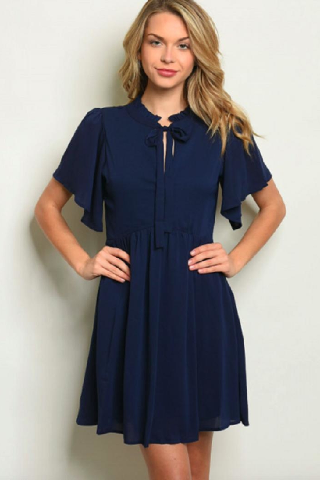 LoveRiche Navy Swing Dress - Main Image