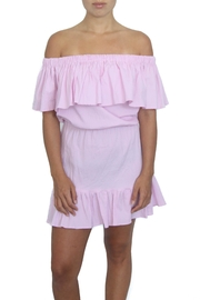 Neat and Tiny Dani Dress - Front cropped