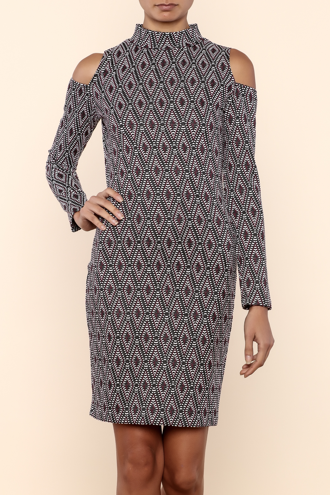 Necessary Objects Cold Shoulder Bodycon Dress Front Cropped Image