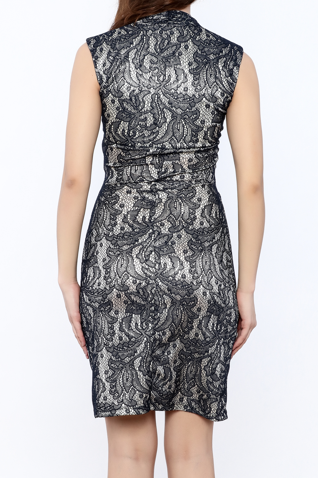 Neda Lace Bodycon Dress - Back Cropped Image
