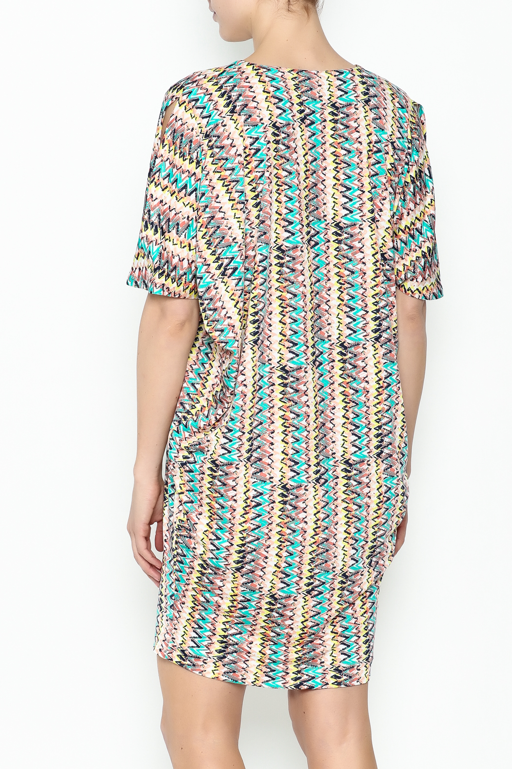 Neda Shirt Dress - Back Cropped Image