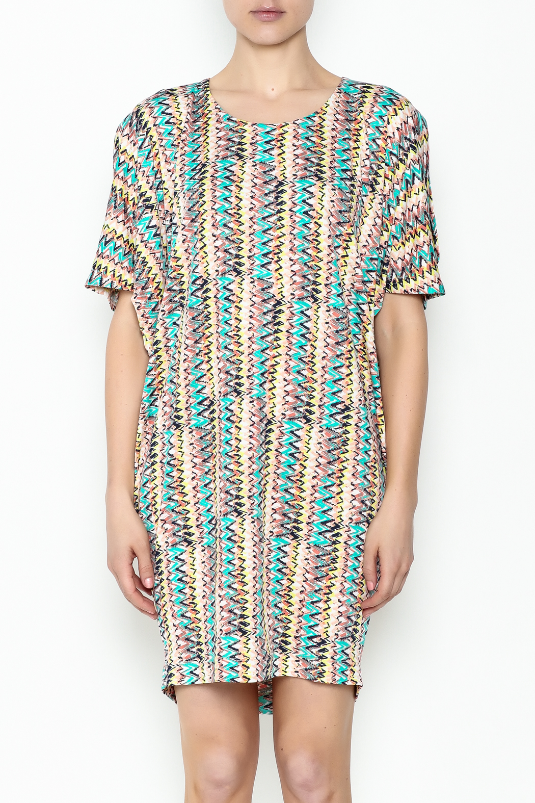 Neda Shirt Dress - Front Full Image