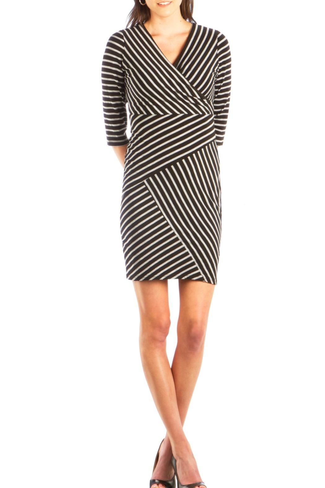 Neesha Black Striped Dress - Front Cropped Image