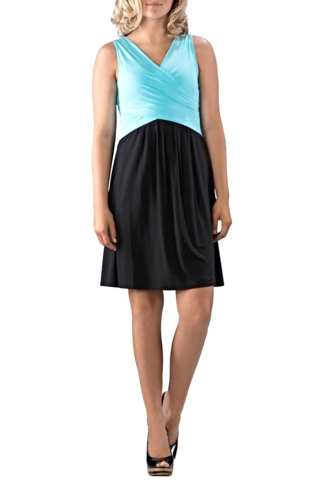 Neesha Colorblock Bodice Dress - Main Image