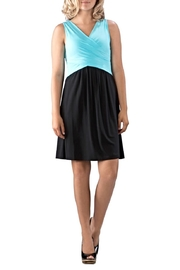 Neesha Colorblock Bodice Dress - Product Mini Image